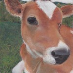 Farm Sanctuary Cow Pastel