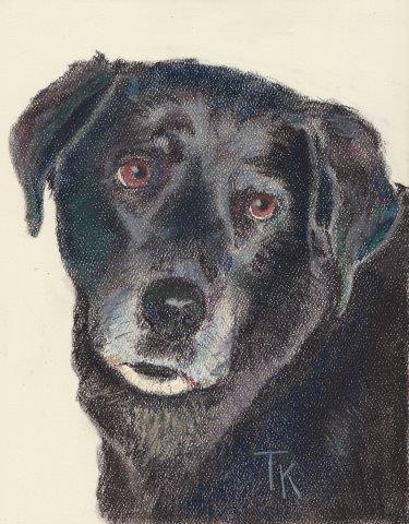 Pastel of dog